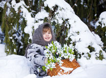 Little girl in a winter wood with the big basket of snowdrops Stock Photography