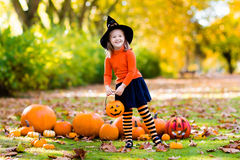 Little girl in witch costume on Halloween trick or treat. Kids with pumpkin on Halloween. Little girl in witch costume and hat playing in autumn park. Child at Royalty Free Stock Images
