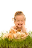 Little Girl With A Basket Full Of Small Chickens Stock Photo