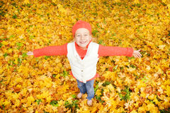 Free Little Girl With Autumn Leaves Royalty Free Stock Image - 6636396