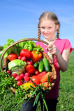 Little Girl With Basket Of Vegetables Stock Images