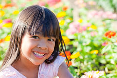 Little Girl With Flowers Field Royalty Free Stock Photos