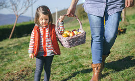Little girl and woman carrying basket with apples Stock Photos