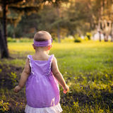 The little girl in the woods Royalty Free Stock Photo