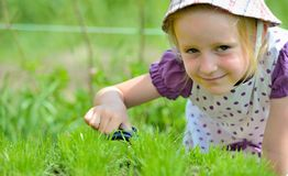 Little girl working in the garden with scissors Stock Photos
