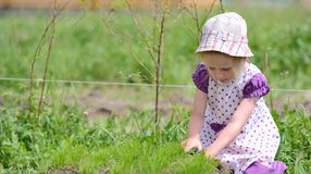 Little girl working in the garden with scissors Stock Images
