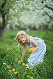 Little girl 5 years old sniffing a dandelion stock photos