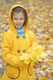 Little girl in yellow coat collects yellow maple leaves Royalty Free Stock Images