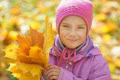 Little girl in yellow coat collects yellow maple leaves Stock Photos