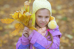 Little girl in yellow coat collects yellow maple leaves Royalty Free Stock Photo