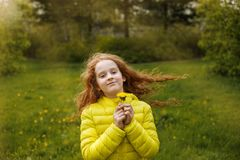Little girl with yellow dandelions in hand, springtime. Royalty Free Stock Image