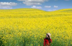Little girl in a yellow field spring season Stock Photo