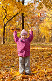 Little girl with yellow leaves Royalty Free Stock Images