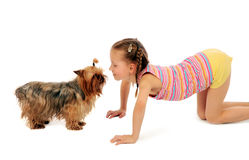 Little girl with yorkshire terrier Stock Photography