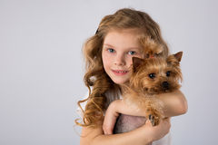 Little girl with Yorkshire Terrier dog isolated on gray background. Kids pet friendship. Beautiful blonde little girl with Yorkshire Terrier dog isolated on gray royalty free stock images
