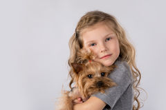 Little girl with Yorkshire Terrier dog isolated on white background. Kids pet friendship. Portrait of beautiful blonde little girl with Yorkshire Terrier dog Stock Images