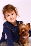 Little girl and  Yorkshire Terrier Stock Photography