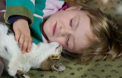 Little girl and young cat are sleeping. Little girl and young cat are sleeping in harmonie Royalty Free Stock Images
