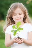 Little girl and young oak tree stock photo