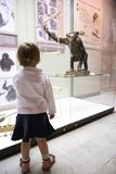 Little girl in zoo musem Stock Photography