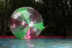 Little girl in Zorb in the pool Royalty Free Stock Photo