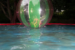 Little girl in Zorb in the pool Royalty Free Stock Images