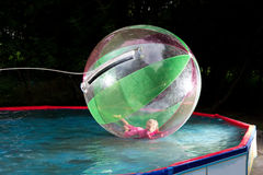 Little girl in Zorb in the pool Royalty Free Stock Photography