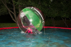 Little girl in Zorb in the pool Stock Image