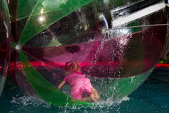 Little girl in Zorb in the pool Stock Photography