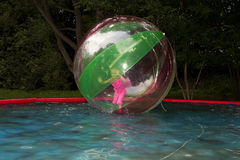 Little girl in Zorb in the pool Royalty Free Stock Image