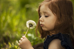 Little girll with dandelion Royalty Free Stock Photos