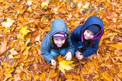 Little girls in autumn orange leaves at park stock photo