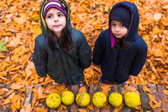Little girls in autumn park Stock Images