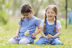 Little girls with chickens Royalty Free Stock Image
