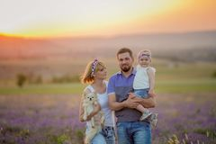 Little girls with dog and falily playing in lavender field stock images