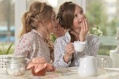 Free Little Girls Drinking Tea Stock Images - 100796314