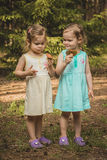 Little girls in the forest with mushrooms Stock Photography