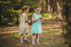 Little girls in the forest with mushrooms Royalty Free Stock Photo