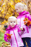 Little girls with grape in autumn Stock Image