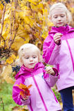 Little girls with grape in autumn Royalty Free Stock Photos