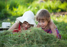 Little Girls in the grass Stock Photography