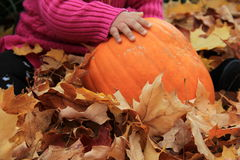 Little girls hand on big orange pumpkin Royalty Free Stock Images