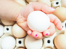 Little girls hand holding a chicken egg over a container of brow Stock Photo