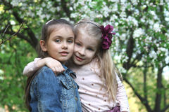 Little girls hugging in spring park tree outdoor Royalty Free Stock Photos
