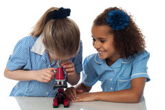 Little girls looking into microscope Stock Photo
