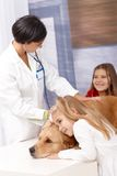 Little girls and pet at veterinarian Royalty Free Stock Photo
