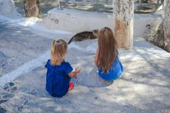 Little girls play with a cat on the streets of Royalty Free Stock Images