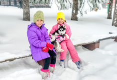 Little girls playing with Husky dog on the snow Royalty Free Stock Image