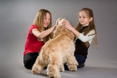Little girls playing with spaniel Stock Photography