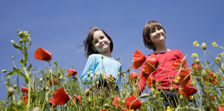 Little girls in the red poppy Royalty Free Stock Image